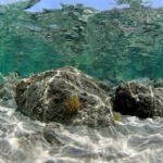 costa nostrum almiros beach marine 01