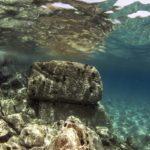 costa nostrum almiros beach marine 10