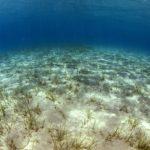 costa nostrum almiros beach marine 14