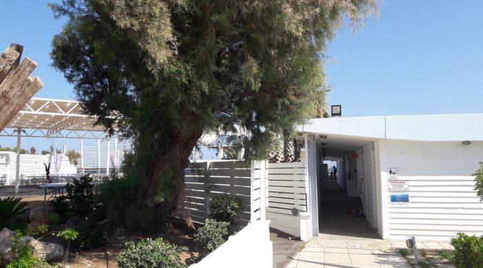 costa-nostrum-karteros-akti-beach-heraklion-crete-gallery-05