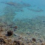costa nostrum voulisma agios nikolaos beach gallery 27